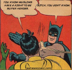 Batman and Robin on Muslims