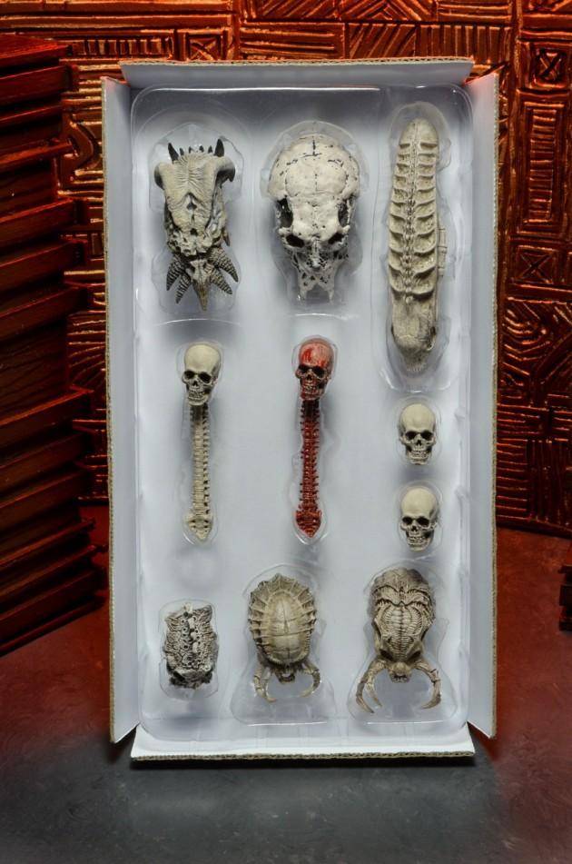 51497-Predator-SkullPack-1