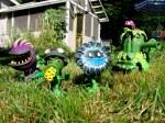 PlantsGroup