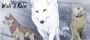 wolf's rain featured
