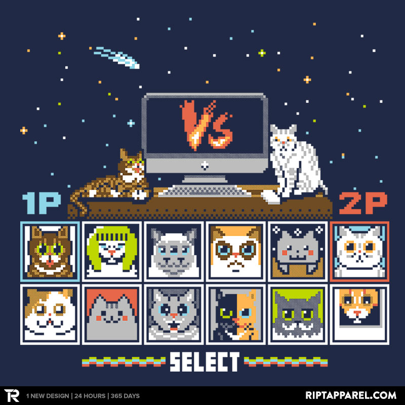 Internet Cat Fight!