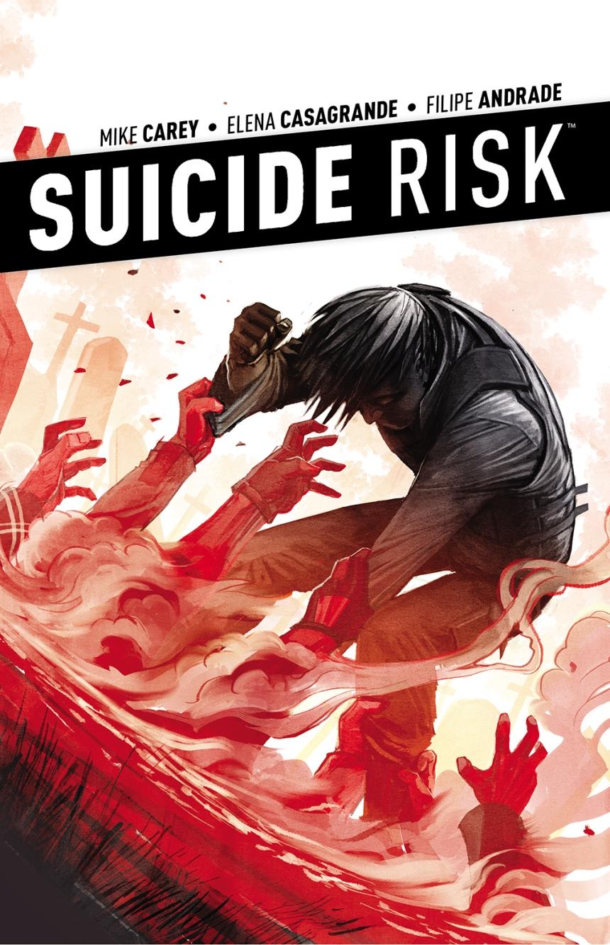 Suicide_Risk_v4_TP