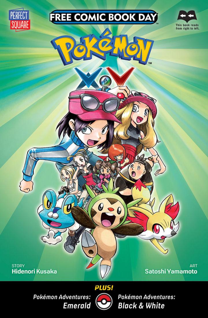 VIZ_PERFECTSQUARE_Pokemon-720x1102