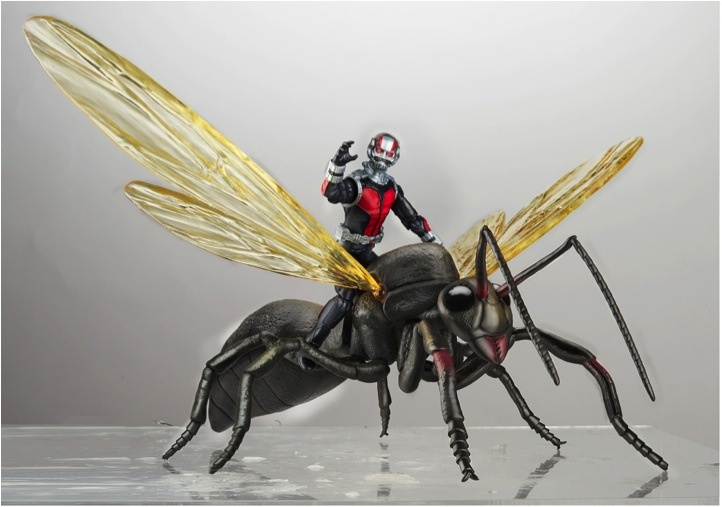 Ant Man with Flying Ant