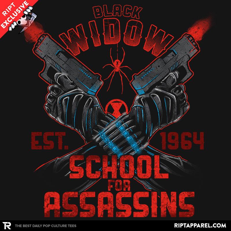 Nat's School for Assassins