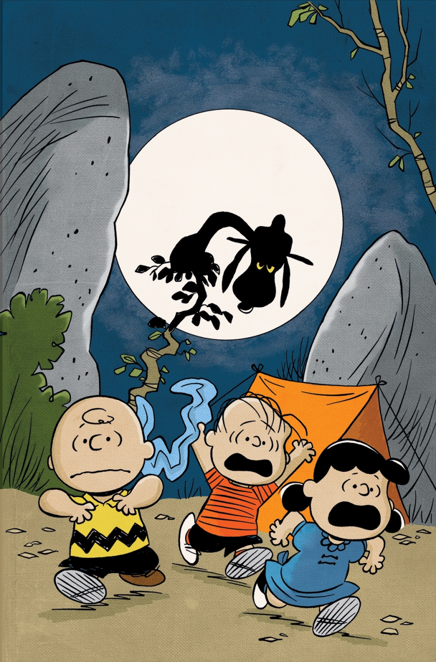 Peanuts #25 DCC Exclusive Variant by Robert Pope