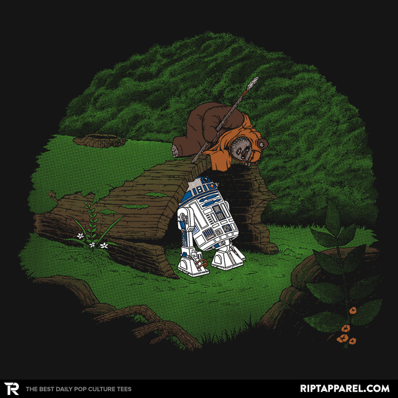 The Furball and the Droid