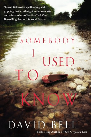Book Review: Somebody I Used To Know
