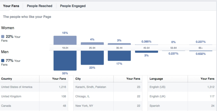 fanpage demographic