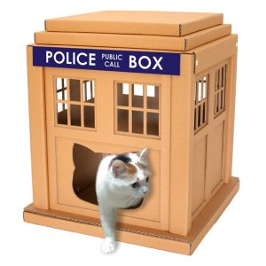 Doctor who cat box