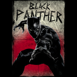 Black Panther Attacks