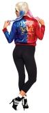 820255-820266 Harley Quinn Adult Back Shot PA