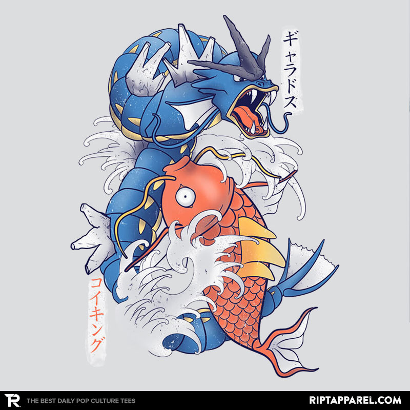 koi-fish-evolution