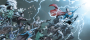dc-universe-rebirth-deluxe-featured