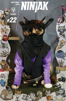 ninjak_022_cat-cosplay-cover