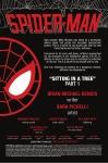 spider_man__12-1