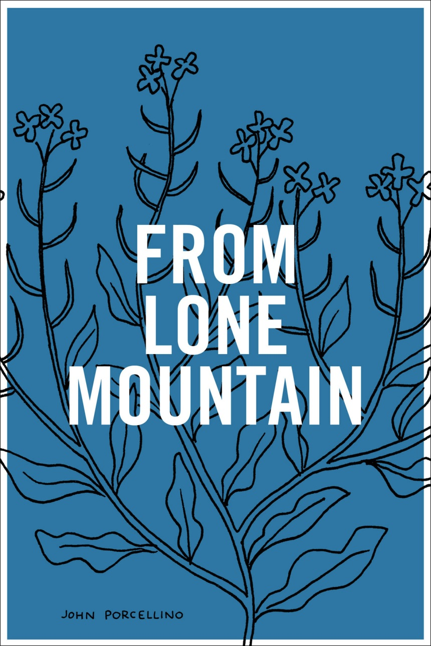 from-lone-mountain