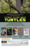 teenage_mutant_ninja_turtles__67-2